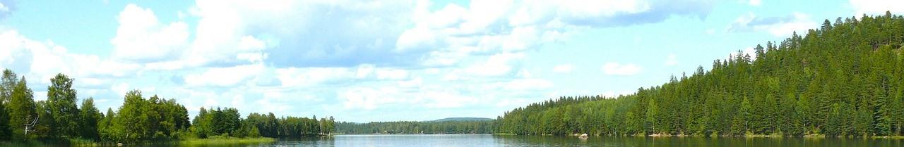Sjo_och_skog_209px